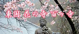 東国 花の寺 百か寺